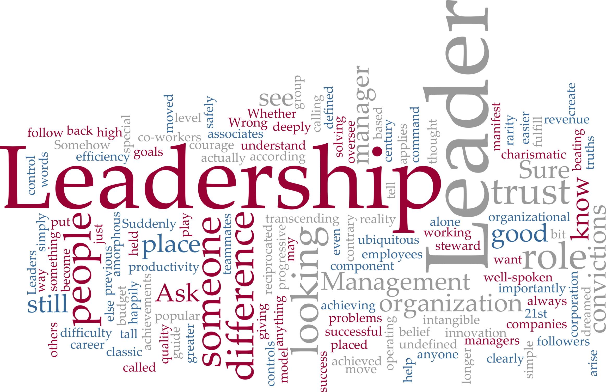Ledarskapsprogram ryms inom regler